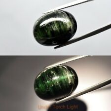 17.80ct 17.5x13mm Oval Cab Natural Unheated Forest Green Cat's Eye Tourmaline