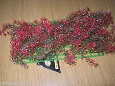 Betta Aquarium Plant Plastic Mat Red Green Weed  25 x 12.5 x 8 cm