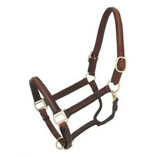 Tough-1 Royal King Raised Leather Halter Adjustable Nose Horse Size Brown