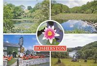 Wales Postcard - The Lily Pools & Ye Olde Worlde Cafe - Bosherston Pembs  AB2328