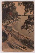 VINTAGE POSTCARD THE LOVER'S WALK SANDGATE QLD 1921