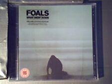 """What went down - Édition Limitée (CD+ DVD) [CD] Foals"""