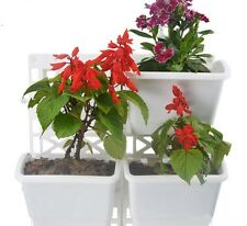 Display Living Wall Flower Fresh Herb Garden Growing Kit 1 Frame Set  of 3 Pots