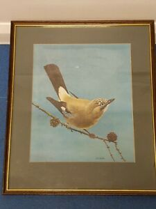 LOVELY LARGE VINTAGE SIGNED LTD. EDITION 30/250  I. C. BUTLER BIRD PRINT framed