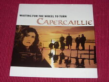 """Capercaillie:  Waiting For The Wheel To Turn  1991   Near mint  Promo  7"""""""