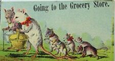 1880's-90's F. W Broms Teas Coffees & Spices Anthropomorphic Family Of Rats P61