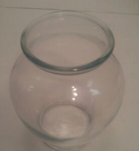 Europa Clear Glass Ovoid Shape Vase Flowers Fish Bowl