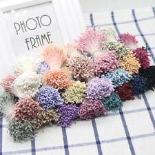 Decor Flower Stamens Pistil for Wedding Decoration Craft