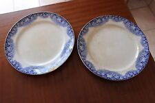 Lot de 2 anciennes assiettes Villeroy & Boch - Motifs fleurs bleues - Gudrun