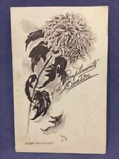 Compliments of the Season EB Scofield flower drawing postcard
