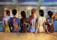 Pink Floyd - Women Album Covers Wall Art Poster / Canvas Pictures / Split Panels