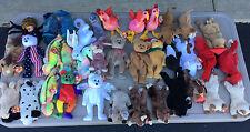 TY Beanie Baby lot 36 Mixed Beanies Holiday Bear Signature Bear Rainbow + more