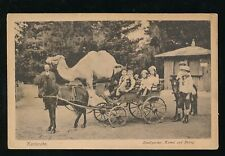 Germany Karlsruhe Zoo Stadtgarten Animals children pony cart c1920/30s CAMEL PPC