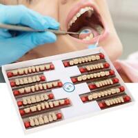 84X Dental Acryl Prothese Falschzahn A3 Kunstharz Gefälschte Zähne-Obere
