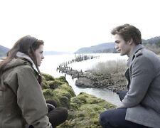 Twilight [Cast] (39973) 8x10 Photo
