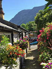 Seaside Cottage for 2. 1 min to beach, Tues 1st - Fri 4th Jan 2019 dog welcome