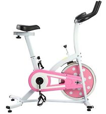 Sunny Indoor Cycling Upright Exercise Bike Stationary Cycle 22 lb Flywheel P8100