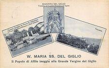 5301) AFFILE (ROMA) FESTA PATRONALE, LA MADONNA DEL GIGLIO E  2 VEDUTINE VG.1940
