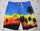 Corona Shorts Men's XL Multicolor Beer Swim Trunks