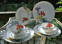 Vtge Rossetti Hand Painted Set of 3 Cups,Saucers,Dessert Plates Made in Japan