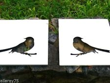 bird Metal Decorative Plaques & Signs