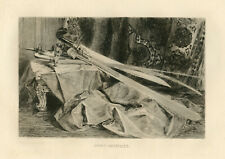Jules Jacquemart original etching