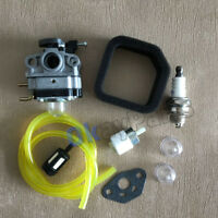 Carburetor kit For Ryobi  RY252CS  RY251PH RY254BC Models 2 Cycle 25cc