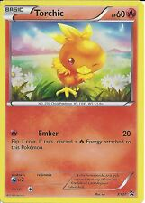 POKEMON - TORCHIC XY37 PROMO HOLO CARD - FROM THE HOENN COLLECTORS BOX