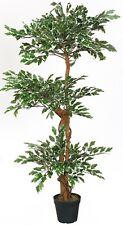 Ficus 3 Kronen grün/weiß 130 cm künstlich Echtholzstamm Kunstbaum McPalms