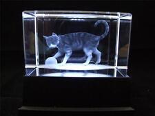 Láser de cristal de vidrio sólido bloque y Blanco Gato Caja de luz.