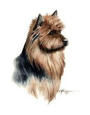Australian Terrier Watercolor Dog 8 x 10 Art Print by Artist Dj Rogers w/Coa