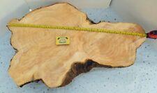 LARGE PINE WOOD SLICE 62 x 40 NICE CORE RINGS TABLE DECORATION WEDDING DISPLAY