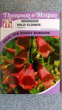 Foxglove digitalis purpurea wild flower seeds. Thompson and morgan. fresh stock.