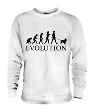 SPRINGER SPANIEL EVOLUTION OF MAN UNISEX SWEATER MENS WOMENS LADIES DOG GIFT