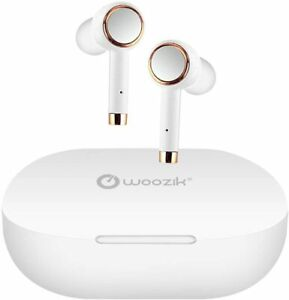 Bluetooth Earbuds with Built-in Mic True Wireless Headphones with Charging Case