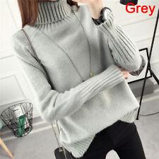 Warm Turtleneck Sweater Women's Jumper Sweaters Pullovers Knitted SweaterX Ly