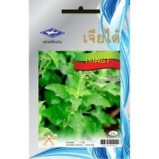 Holy basil seeds Thai Herb Kaprao 2400 Seeds Ocimum Tulsi Sanctum Plant