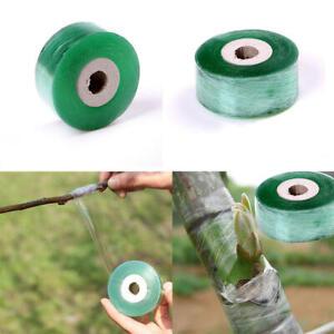 2cmx100m / Roll Garden Tape Grafting Fruit Tree Engraft Branch Tape Stretch Film