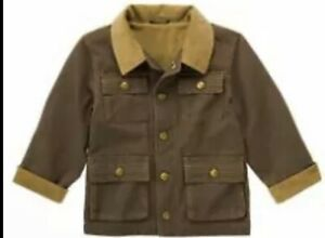 """NWT Boys M(7-8) Gymboree """"MIGHTY DINO"""" Brown/Tan Lined CANVAS Snap-up JACKET"""