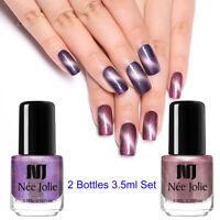 2Bottles/Set NEE JOLIE 3.5ml Magnetic Nail Polish Purple Shimmer Nail Varnish