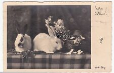1932 cartolina A.G. Foto PAG Ostern Hasen Pasqua conigli Easter rabbits lapins