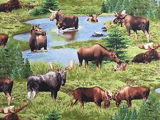 North American Wildlife Animals Moose Elizabeth's Studio #2571 By the Yard