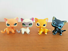 LITTLEST PETSHOP LPS lot de 4 Chats Européens #1116 #855 #1643 #336 cat rare
