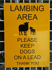 Farming Signage - LAMBING AREA Keep Dogs On Lead - LARGE 300x210mm (41-02)