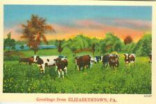 Elizabethtown Pa A Pastural Greetings from Elizabethtown