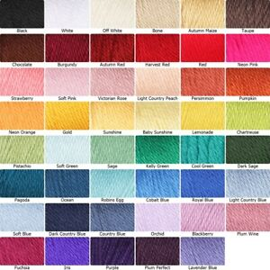 [BUY 10 GET 25% OFF] Caron Simply Soft Yarn 170g - Aran 100% Acrylic Yarn