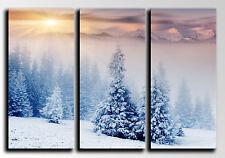 Cuadro Moderno Fotografico base madera,87x62cm,Nieve Invierno Bosque Puesta Sol