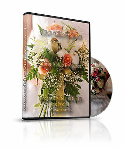 After Effects Project - Wedding Pack -  Shipping Via Download