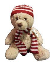 Aeropostale Teddy Bear 15� Excellent Clean Condition