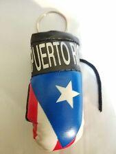 Puerto-Rico-Rica-bandera-MINI-guantes-de-boxeo-Llavero-Anillo-los-coches-camion